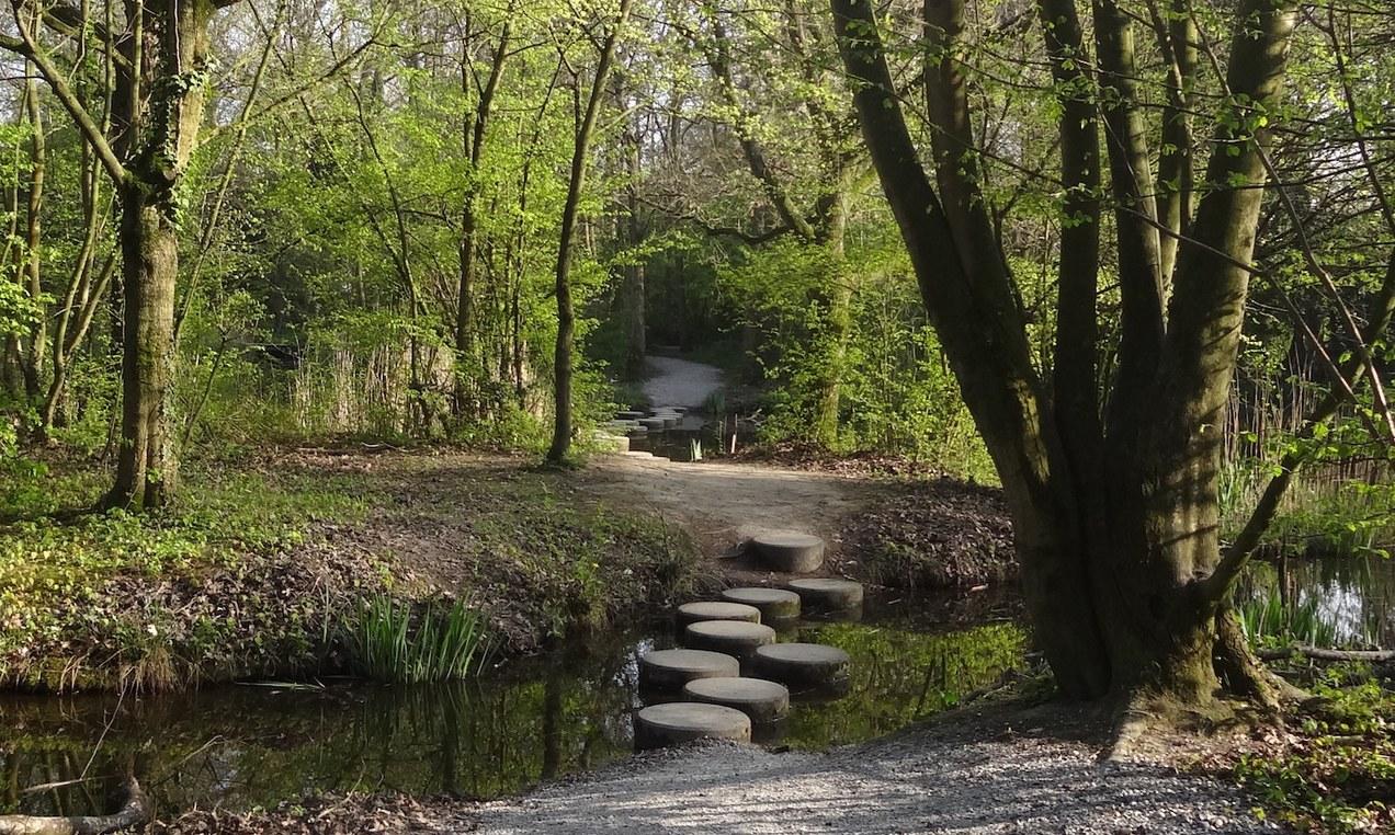 Afbeelding van de stapstenen Wijkpark Merenwijk